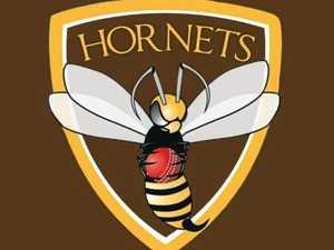 Hornets award winners announced