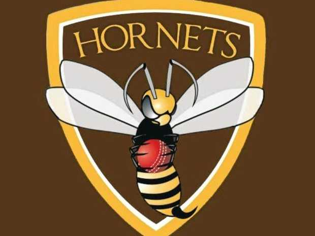 Ipswich/Logan Hornets cricket club logo.