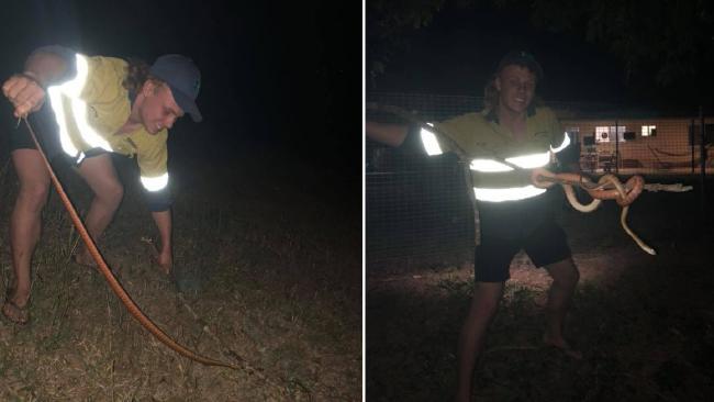 Wyatt McDonald wrangles a snake. Picture: Facebook