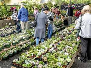 Queensland Garden Expo is green-thumb heaven