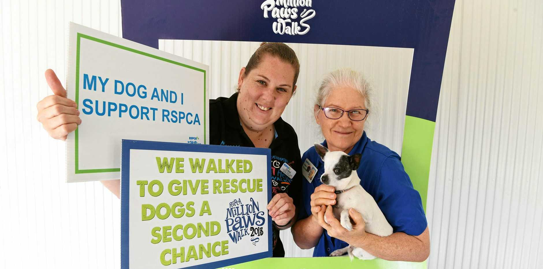MILLION PAWS WALK: RSPCA acting manager Donna Wolgast and volunteer Helen Wolfe with Louie the Superstar.