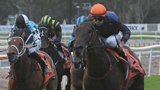 Jockey Tye Angland rides Roman Son to victory at Hawkesbury on  April 28, 2018. Picture: Simon Bullard/AAP