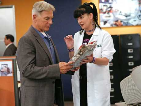 Perrette recently left NCIS after 15 years, amid reports of a feud with star Mark Harmon (pictured).
