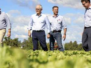 Malcolm Turnbull pays visit to Gatton