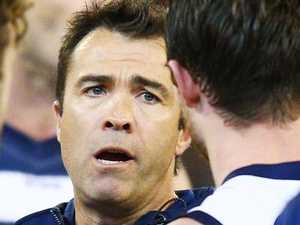 Scott at a loss over 'inexplicable' Cats