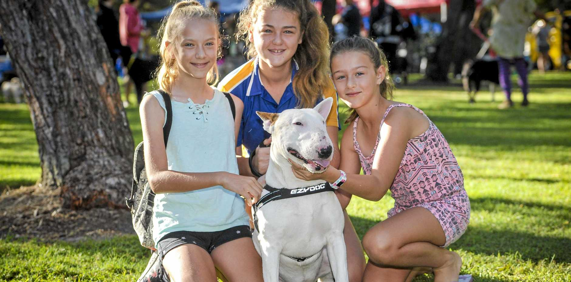 Shayla and Anika Schofield and Amy-Lee Simpson-Williams with Grunta  at the 2018 Million Paws Walk, Tannum Sands.