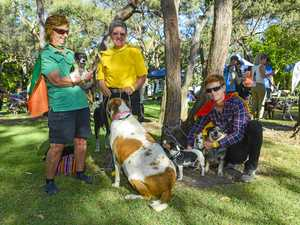 RSPCA Million Paws Walk Tannum Sands