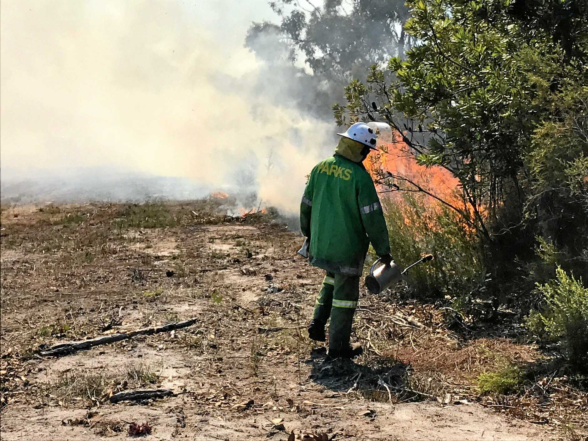 Queensland Parks and Wildlife is conducting a controlled burn in Noosa National Park on Tuesday.