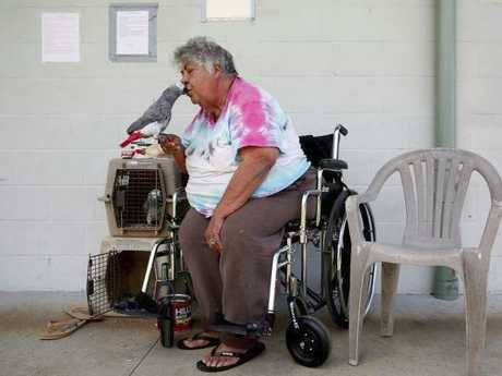 Dogs, cats, livestock and birds are just some of the animals rescued after the Kilauea volcano eruption. Picture: Reuters