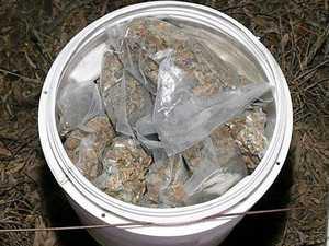 High-grade cannabis, steroids seized in Laidley raids