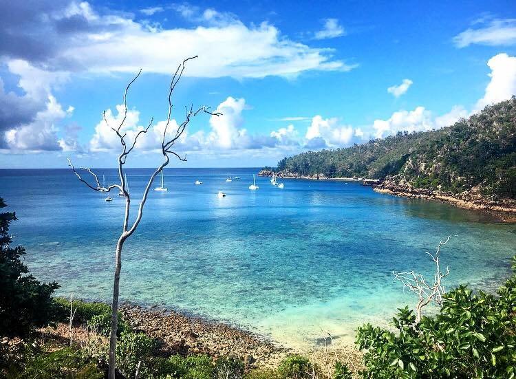 Blue Pearl Bay, off Hayman Island.