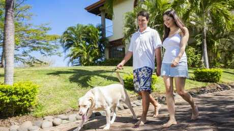 A new survey has found pet owners are struggling to find rental accommodation.