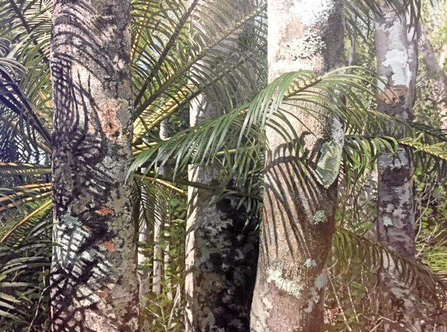 PRECISION WORK: Artist Marci Russo's winning entry - Tropic of Capricorn