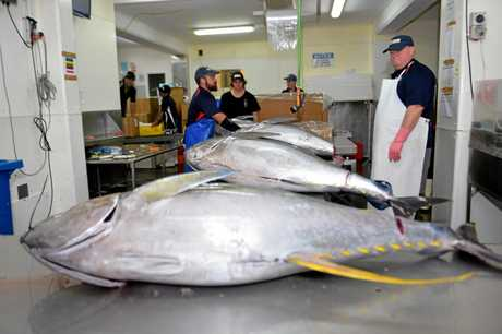 Walker Seafood exports wild caught tuna around the world.