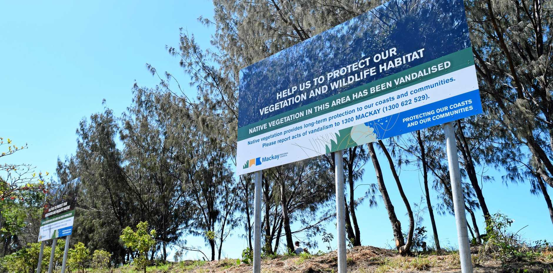 Mackay Regional Council erected three billboards to block the stolen view after someone took to about 20 trees with an axe at Blacks Beach.