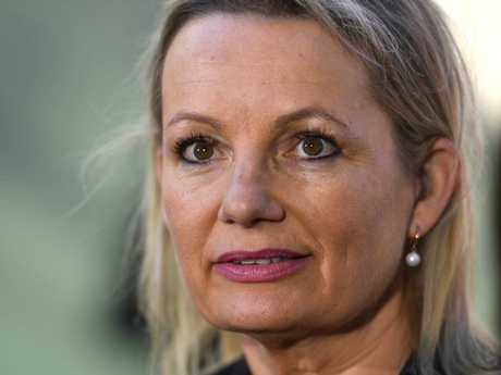 Liberal Member for Farrer Sussan Ley wants to ban live export trade. Picture: Mick Tsikas