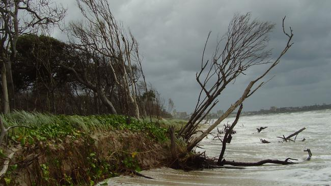 Fears island could split in two