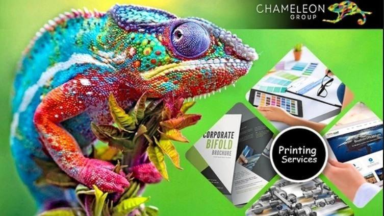 LIQUIDATION: Krico Pty Ltd, the parent company of Chameleon Group, went into liquidation last week.