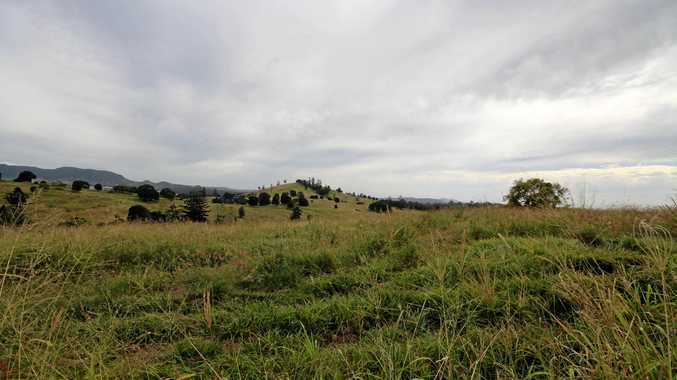 STRONG RETURN: Cattle grazing properties at Pie Creek and McIntosh Creek have been purchased for $6.1 million.