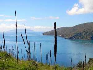Developers eye off Mackay island paradise