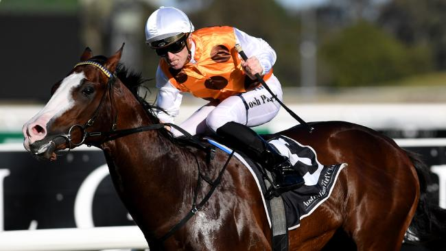Everest slot holders will closely monitor Menari's progress in the spring. Picture: AAP