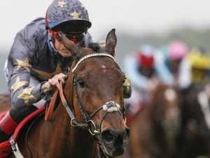 Magic Circle firms for Melbourne Cup