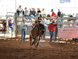 the mud flies in furious saddle bronc action at the