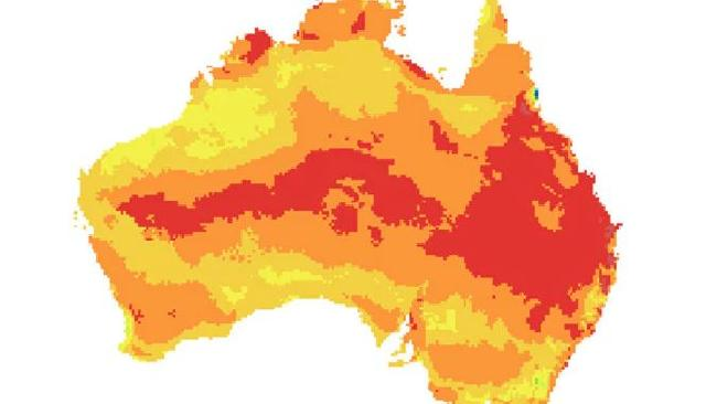 The invasive ants could spread across the country. Picture: Invasive Species Council