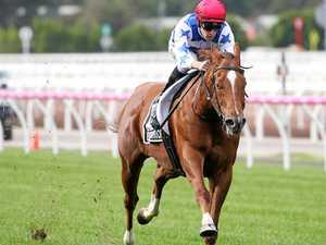Sprint star ready to set Royal Ascot alight