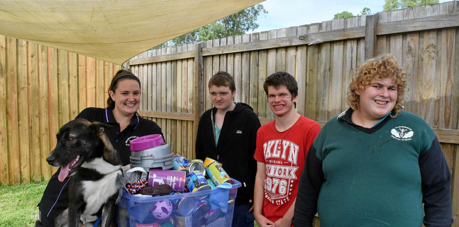HELP: Maryborough Animal Refuge assistant manager Caitlyn Hennessey with two-year-old Shepherd cross Akela welcomed a huge donation from Maryborough Special School students (from left Blake, Izieah and Nick.