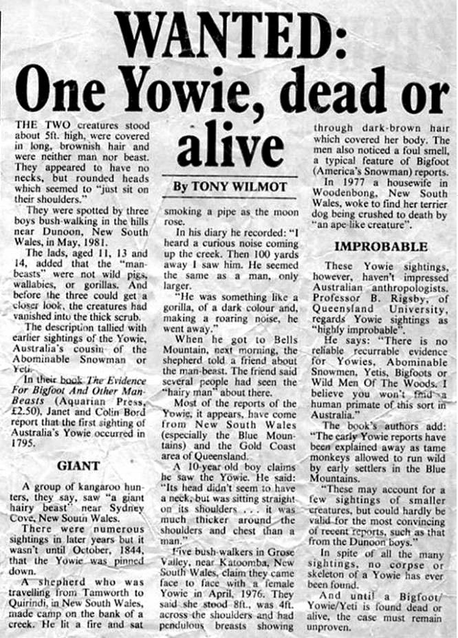 Newspaper clippings from the Northern Star (various dates) on Australian Yowie Hunters Website.