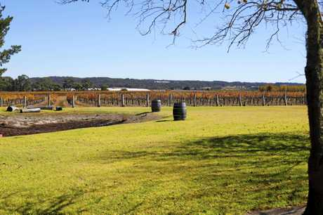 The lawn and front vineyards at The Summit Estate Wines.