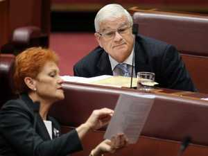 One Nation rebellion over Hanson's tax backflip