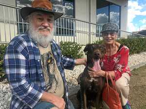 Couple take out mortgage to pay for shot dog's $15k vet bill