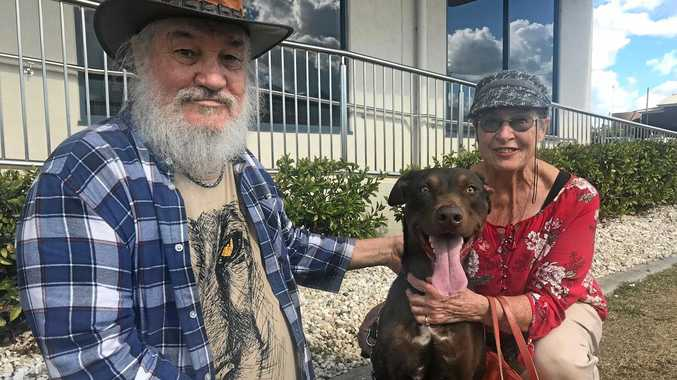 GOING HOME: Zuma is finally going home after five months at the vets. His owners Dieter and Margot Moeckel are over the moon to have the red kelpie back in their care.
