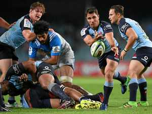 Phipps wins Waratahs nod to take on Reds