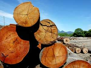 Public meetings to be held against proposed logging rules