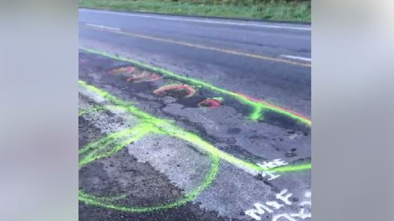 A frustrated motorist says he took drastic action after being ignored by authorities. Picture: Facebook