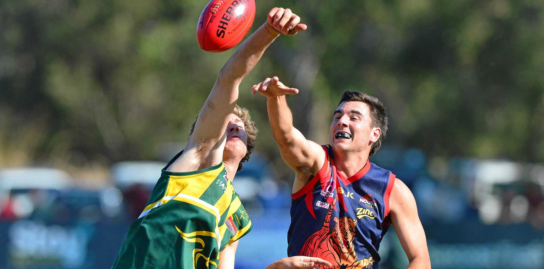 Former Maroochydore Roo Jack Tomkinson played for the Brisbane Lions in the NEAFL clash against Aspley Hornets.