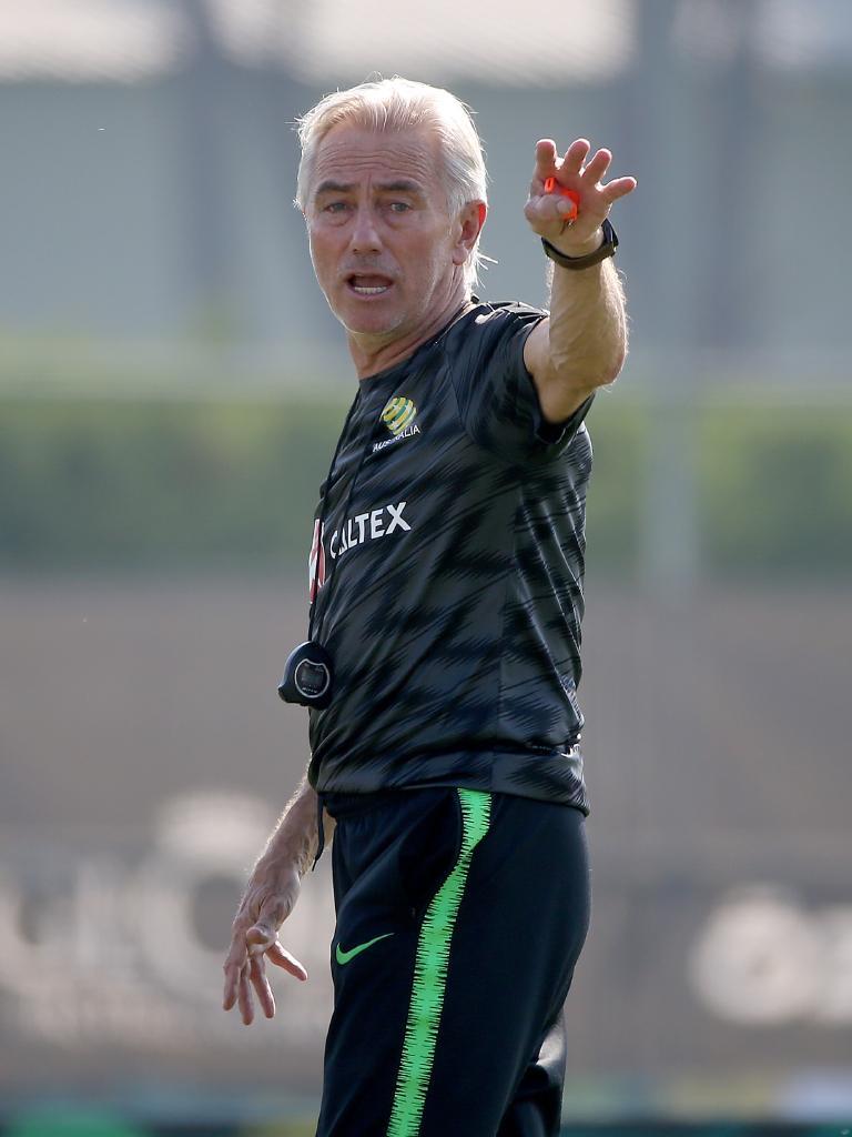 Socceroos boss Bert van Marwijk