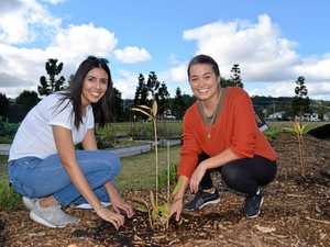 New bush tucker garden to supply Lismore with healthy food