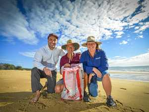 Queensland's cleanest beach in our own backyard