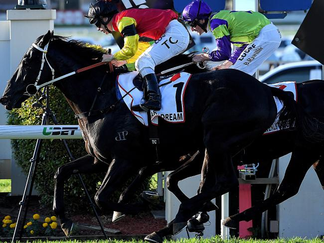 Jockey Tim Clark pilots Dark Dream to victory in Queensland Derby. Picture: AAP