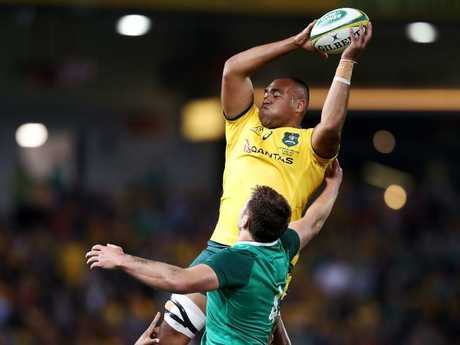 Caleb Timu slotted in beautifully in his Wallabies debut. Pic: Getty