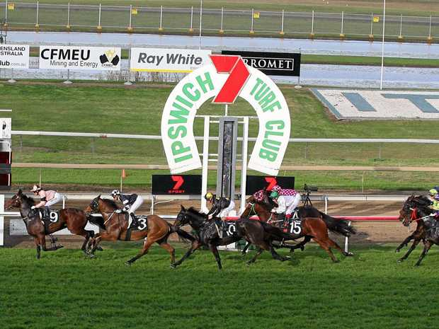 A bright forecast, top runners expected on Ipswich Cup Day.