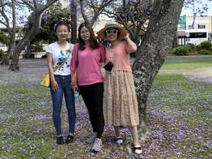 Tourists flock to Valley for purple festival