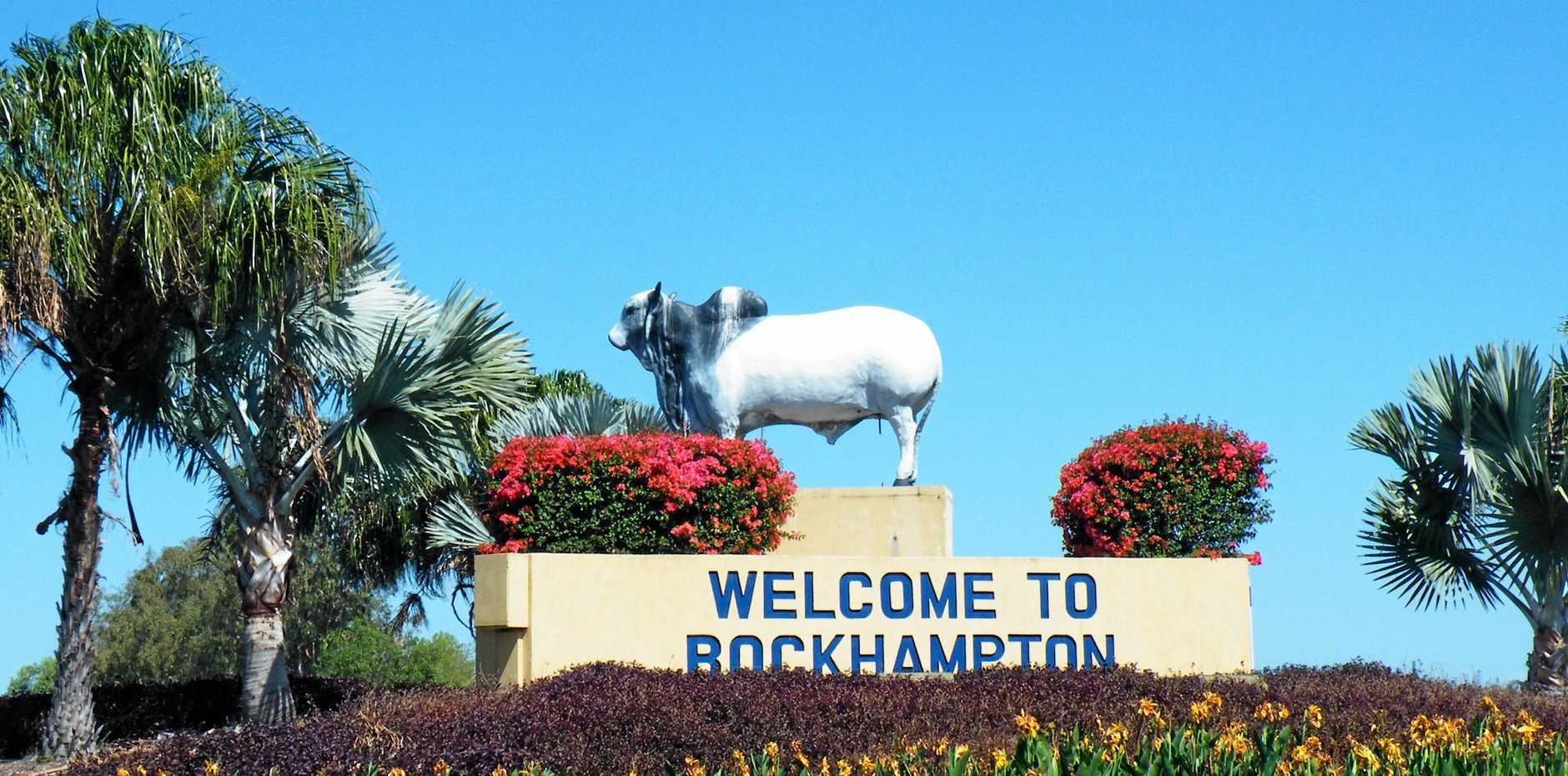 Bull at yeppen round-a-bout ( Welcome to rockhampton ) Photo Maddisan Hooper / Morning Bulletin