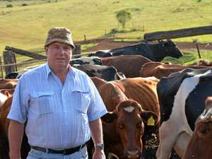 Future focus for our dairy farming industry