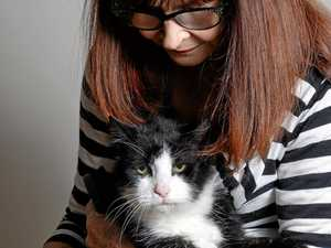 From Germany with love, Peter the cat finds new home
