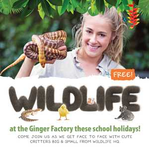 The Ginger Factory is welcoming some furry friends during the school holidays and you're invited to play at our FREE petting zoo and reptile display!